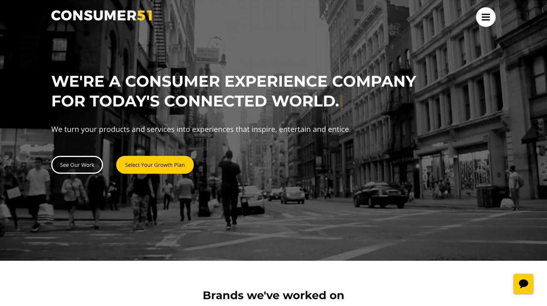 Consumer51's Website'